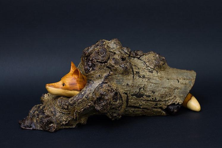 Un renard caché dans un tronc creux d'où ne dépassent que sa tête et sa queue. Sculpture en bois de Christian Delacoux.