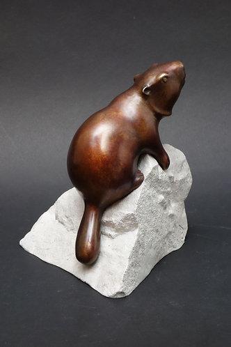 Une marmotte aux formes douces fait le guet sur son rocher. Sculpture en bronze de Christian Delacoux, h 19 cm.