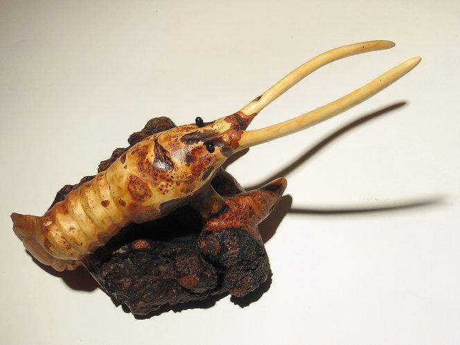 Une écrevisse aux grandes antennes posée sur une racine. Sculpture en bois de Christian Delacoux, 23 cm de long.