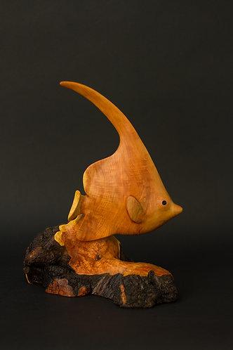 Poisson cocher avec sa longue nageoire dorsale nageant à fleur de corail. Sculpture en bois de Christian Delacoux, h 29 cm.