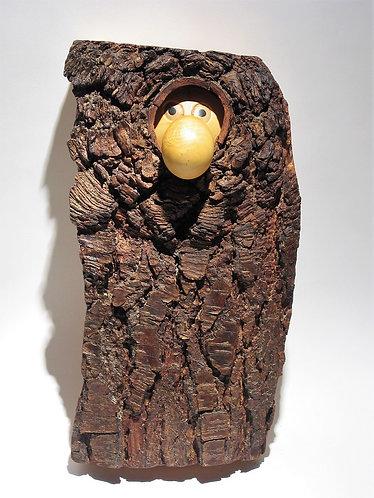 Un gros nez et deux yeux apparaissent d'un trou dans l'écorce d'un arbre. Sculpture en bois de Christian Delacoux, h 39 cm.