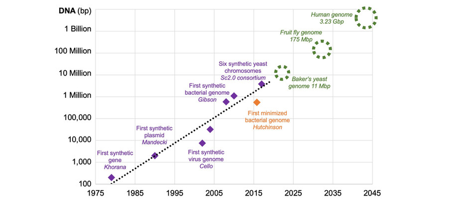 What is Synthetic Genomics?