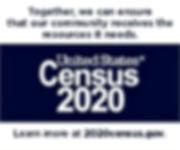 Census 2020 Spanish English information