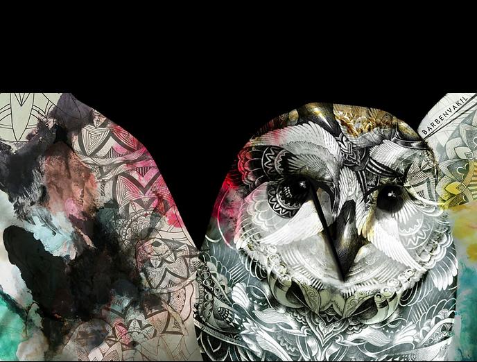 kufsi owl.png