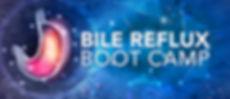 bile reflux boot camp cover.jpg