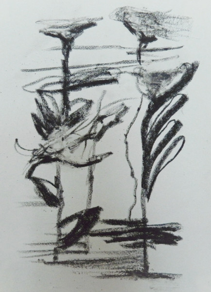 """Some smudged flowers.  Charcoal and chapstick 11""""x8"""""""