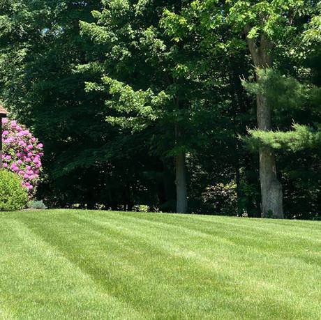 Freshly Mowed Lawn Hebron, CT