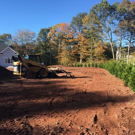Tree Installation II