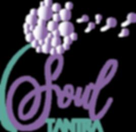 Logo Soul final.png
