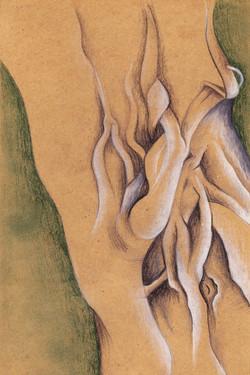 Banyan roots 2