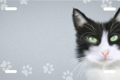 LP00993-Black and White Cat