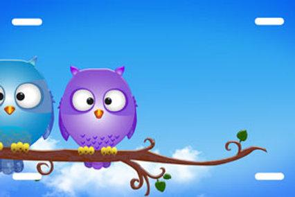 LP00843-Two Owls Blue