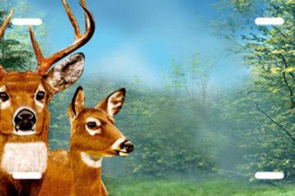LP00870-Deer Forest