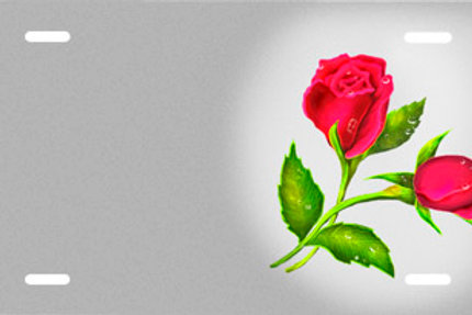 LP00601-Red Roses on Silver
