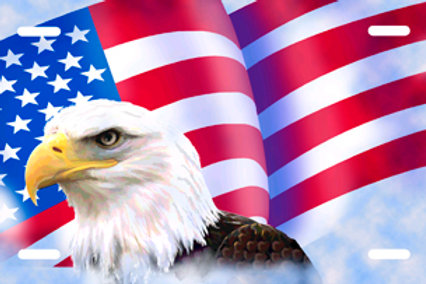 LP0071-Eagle American Flag