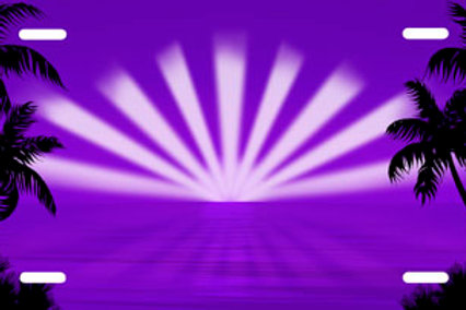 LP00276-Purple Sunburst