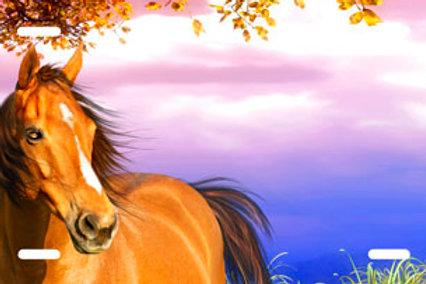 LP00411-Single Horse