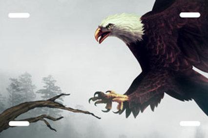 LP00847-Eagle