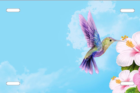LP1020-Hummingbird