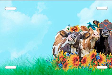 LP1012-Cows Funny