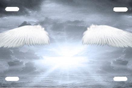 LP00953-Angel Wings on Grey