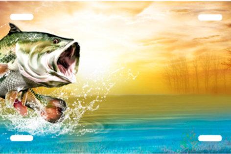 LP00566-Bass on Lake