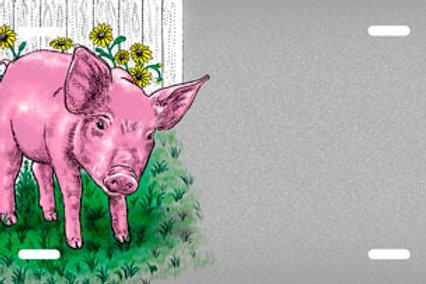 LP00414-Pig
