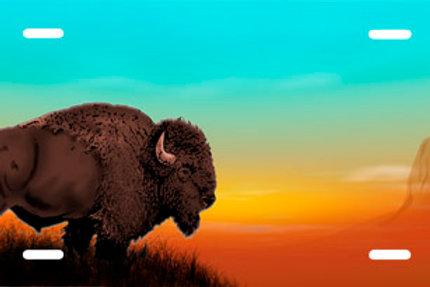 LP00753-Buffalo