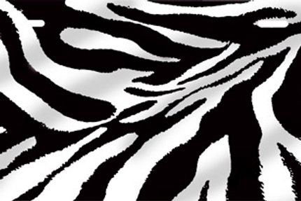 LP00650-Zebra