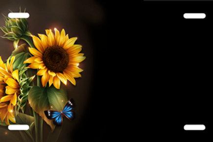 LP00672-Sunflowers