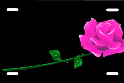 LP538-Pink Rose