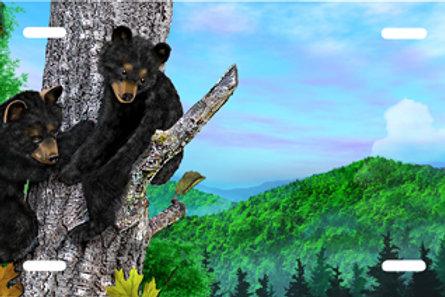 LP00936-Bear Cubs in Tree