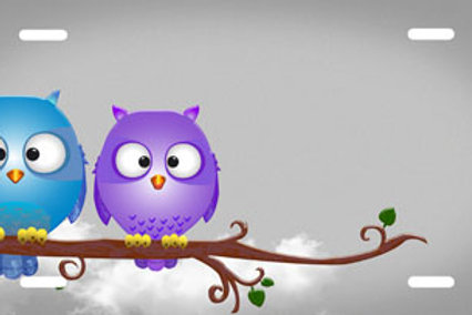 LP00844-Two Owls Grey