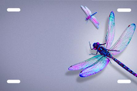LP00604-Dragonfly