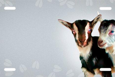 LP00998-Goats