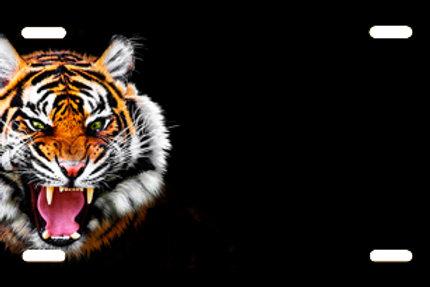LP00915-Tiger
