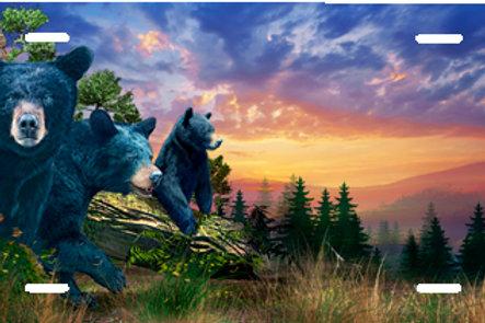 LP00940-Three Bears on Orange