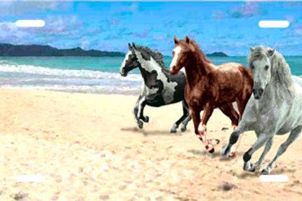 LP00557-Horses on the Beach