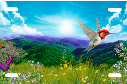 LP00959-Hummingbird on Blue Mountains
