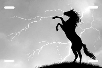 LP0083-Horse on Grey Lightning