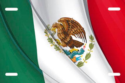 LP00884-Mexican Flag Full