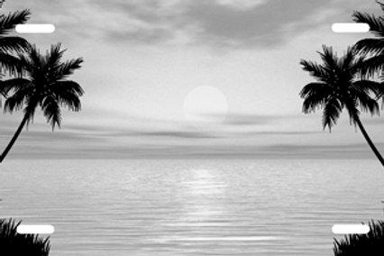 LP0066-Silver Beach