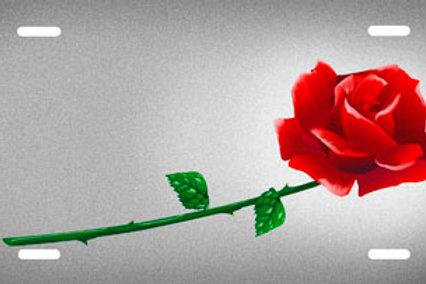 LP00139-Rose on Silver