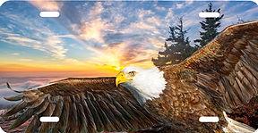 1000 eagle new sunrise.jpg