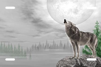 LP00739-Grey Wolf