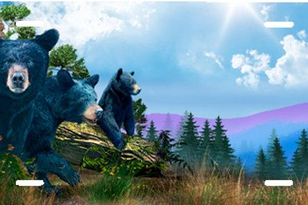 LP00939-Three Bears on Blue
