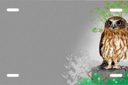 LP00627-Owl