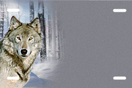 LP00550-Wolf
