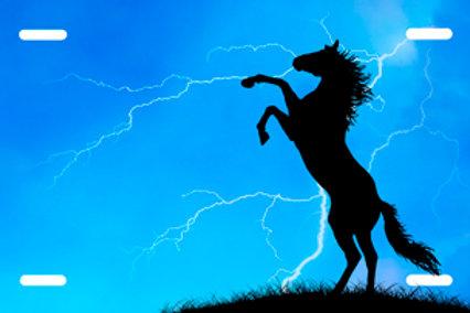 LP0040-Horse on Blue Lightning