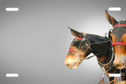 LP00421-Mule Team Grey
